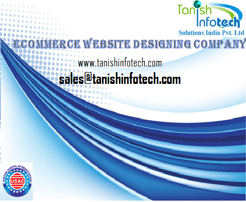 professional E-commerce web development services