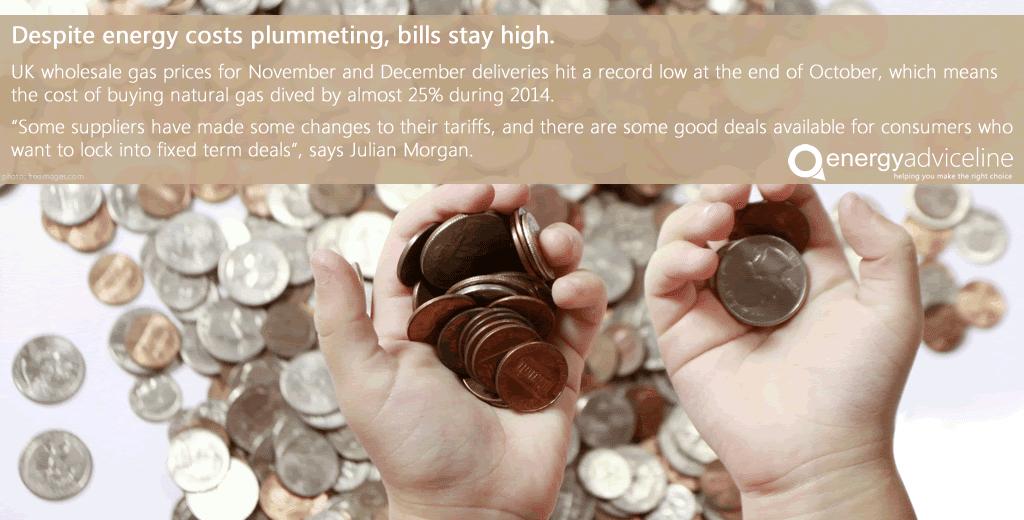Despite energy costs plummeting, bills stay high