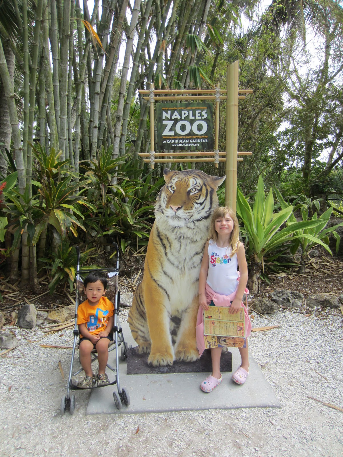day at the naples zoo naples zoo at caribbean
