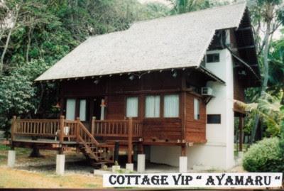 Cottage di Pulau Ayer Cottage & Resort, Pulau Ayer Pulau Seribu Island Resort Jakarta tempat wisata alam nuansa alami di Kepulauan Seribu