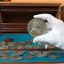 Zeladora de biblioteca acha coleção de moedas avaliada em milhões.