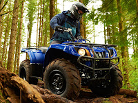 2013 Grizzly 350 Auto 4x4 Yamaha pictures 3