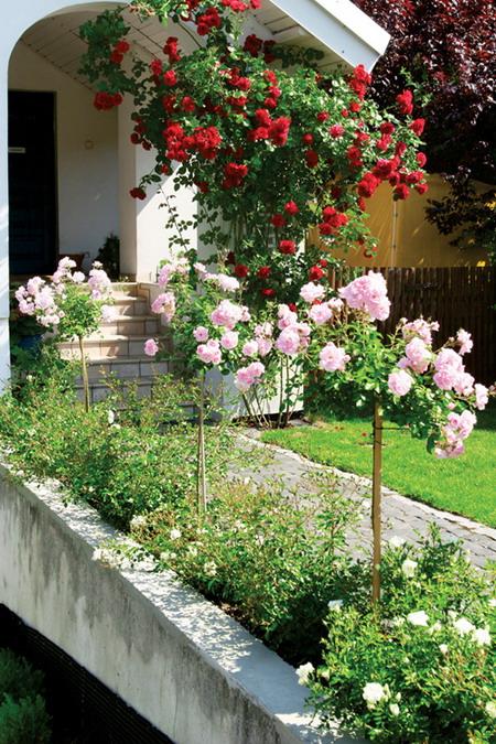 As flores, particularmente, ao longo dos séculos foram sofrendo