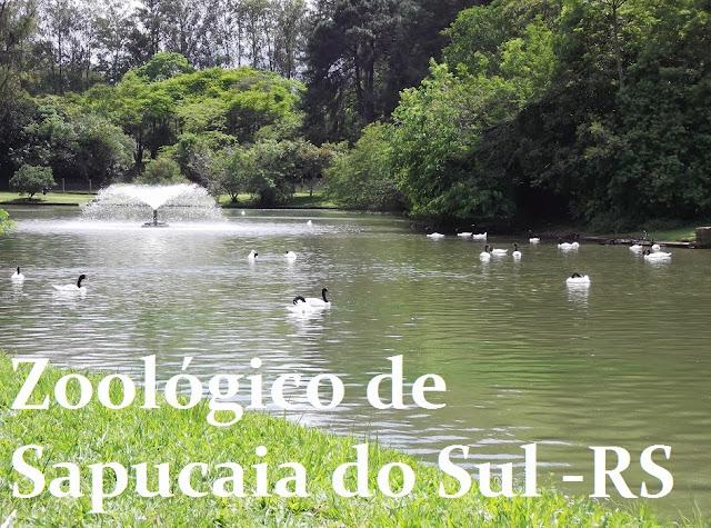 zoologico de sapucaia do sul rs