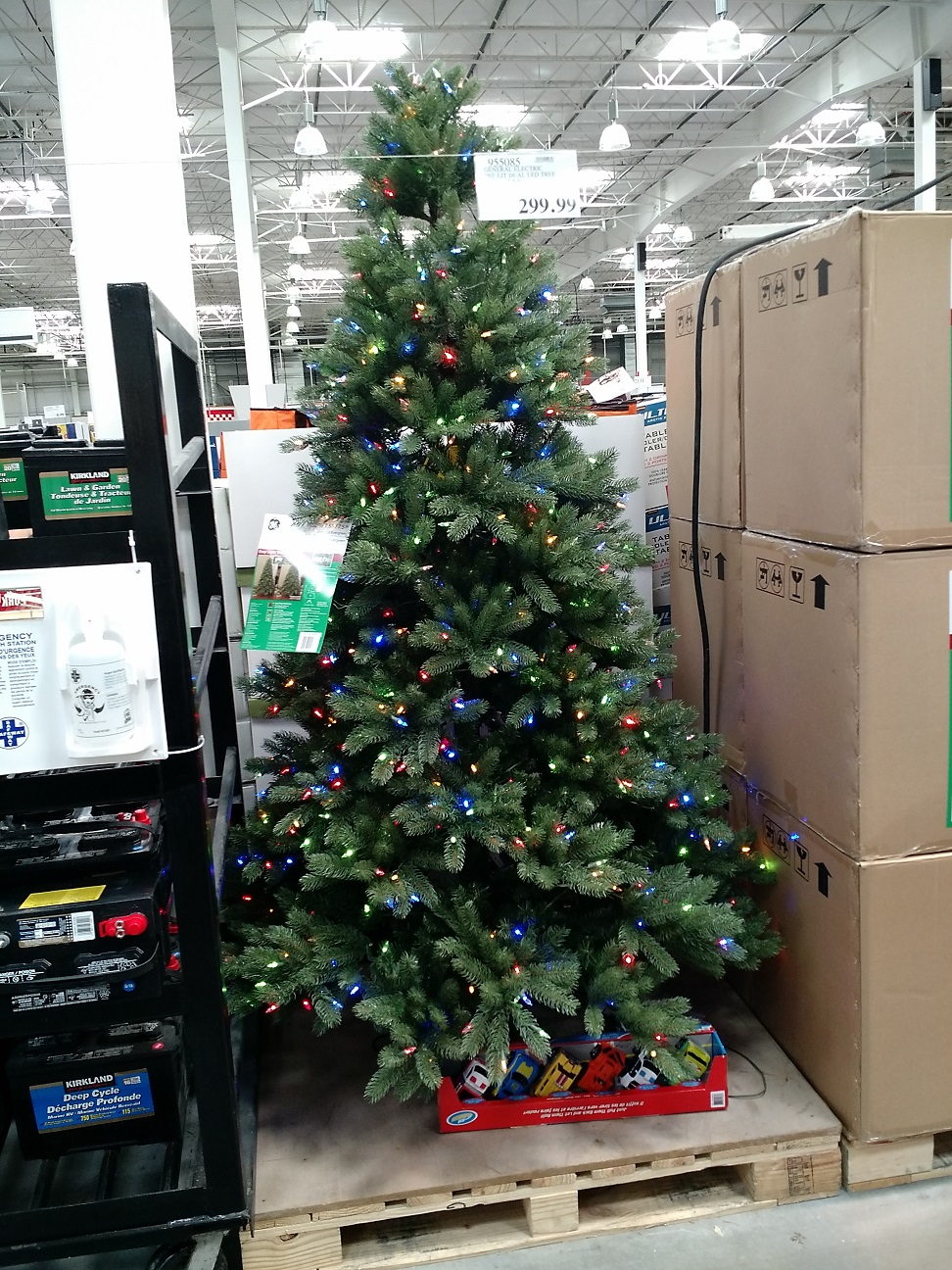 Fongpay\'s Universe: Christmas Trees for sale in July!?!