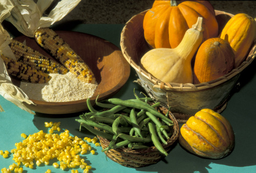 AGN VEG GLOBAL: What Did American Indians ORIGINALLY Eat?