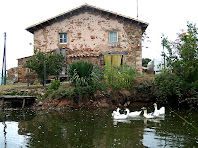 La Casa Nova de El Crous des de la seva bassa