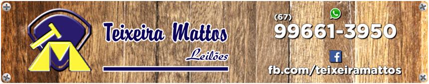 Teixeira Mattos Leilões