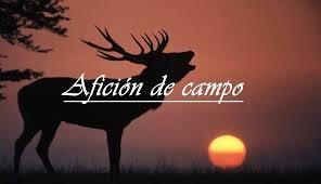 AFICIÓN DE CAMPO