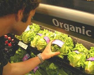 Kenapa Makan Tanaman Organik Baik Untuk Ibu Mengandung