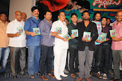 Dillunnodu Audio release function photos-thumbnail-5