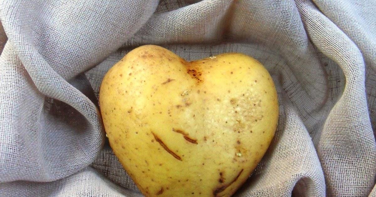 Diana 39 s cook blog pomme de terre farcie pour la st valentin - Pommes de terre a la braise ...