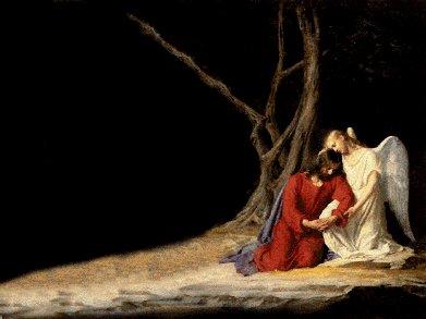 La tenerezza, la dolcezza, l'amore senza confini...