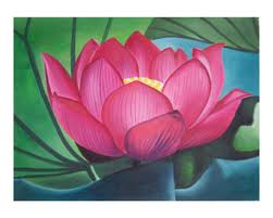 lotus flower