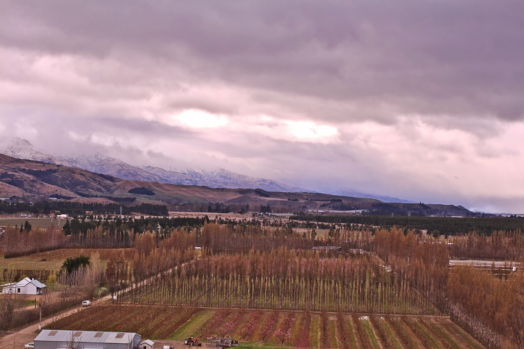 A wintry view from Mt Difficulty Wines cellar door and restaurant.