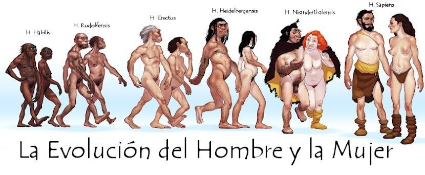 Teoria de Darwin Evolucion Del Hombre la Evolución Del Hombre y la