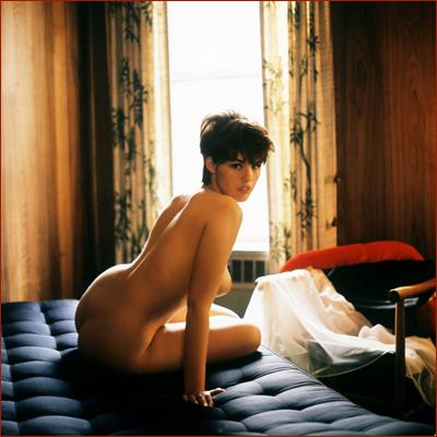 http://redblow.com/stuff/dianne-chandler-miss-september-1966/dianne-chandler-vintage-retro-playboy-10-800x799.jpg