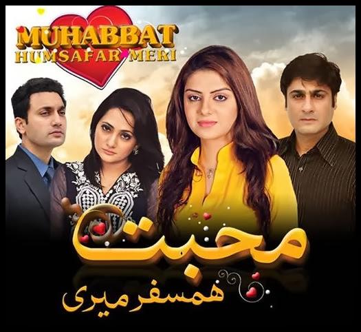 Mohabbat Humsafar Meri tv one