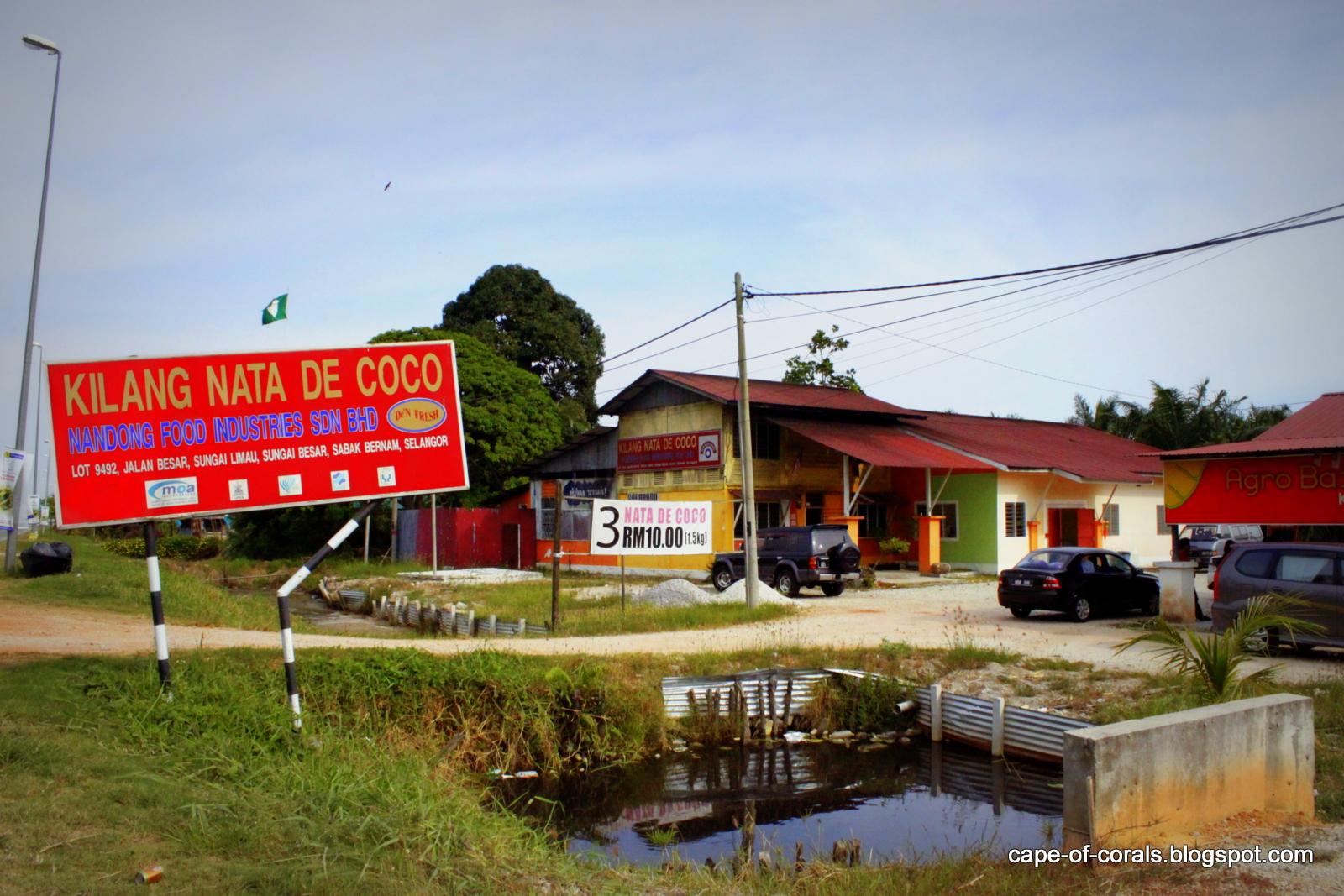 cape of corals nata de coco factory in selangor homestay