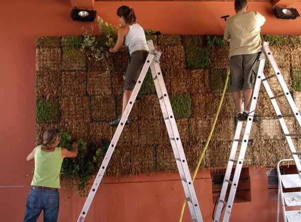 jardim vertical tecido:Horta e Jardim: Como montar um jardim vertical