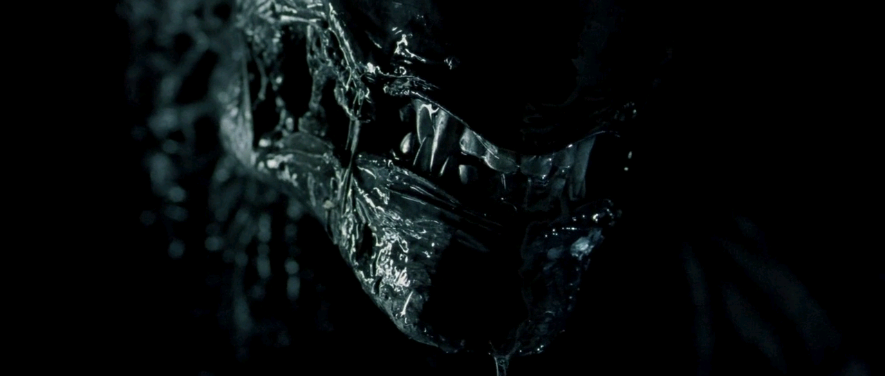 AVP Alien vs Predator (2004) S4 s AVP Alien vs Predator (2004)