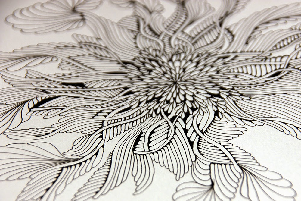 Sunflower Line Drawing : Silver expression: sunflower of sorts