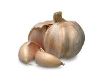 Benefits of Eating Garlic