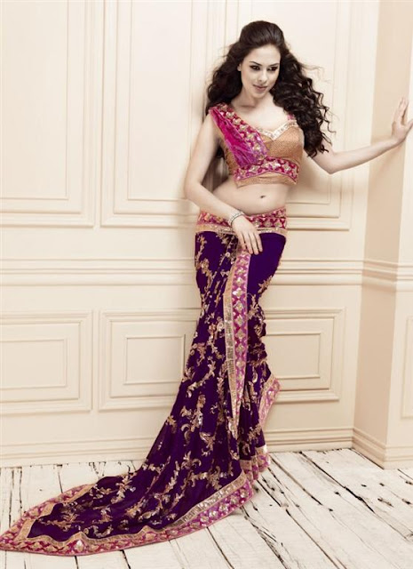 Indian Bridal Saree blouse Design