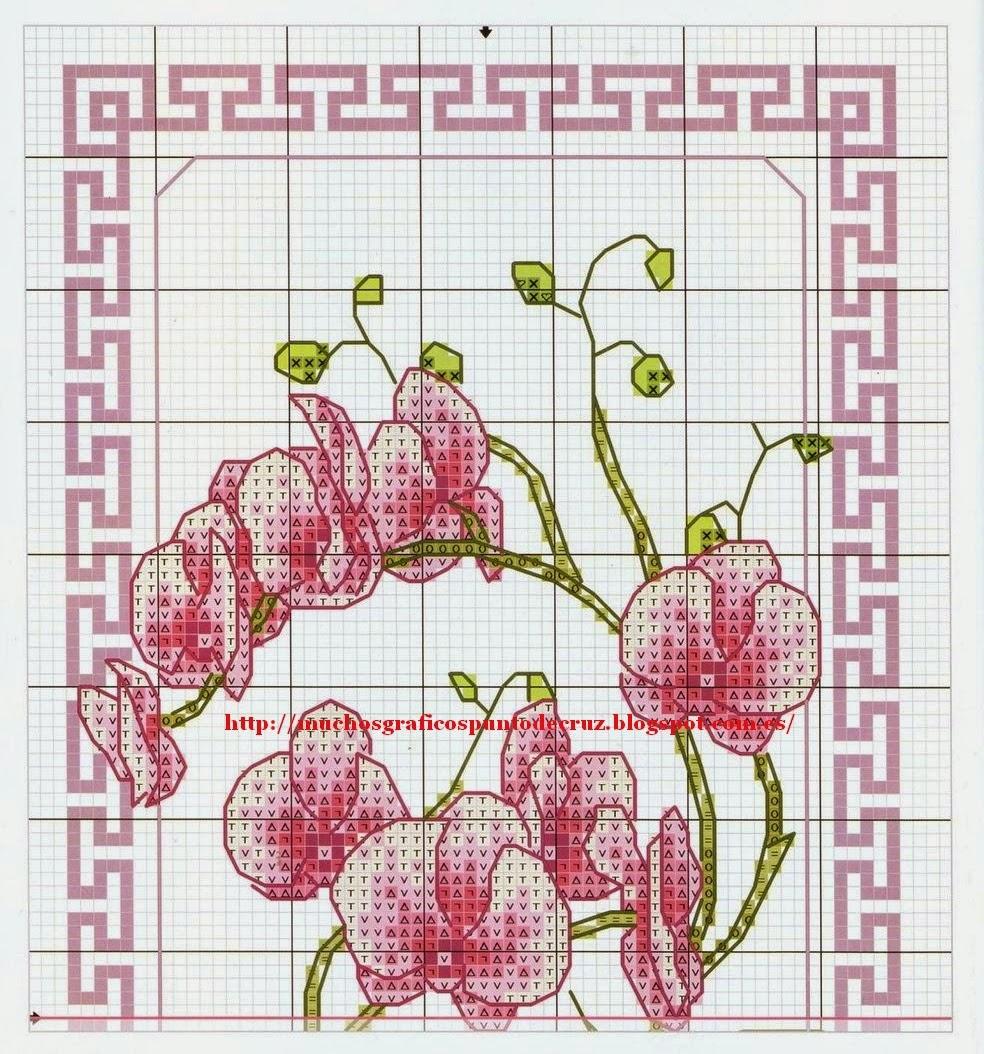 Fotos Flores Orquideas Gratis - MI LISTA DE ORQUIDEAS, con algunas fotos Foro de InfoJardín