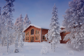 Pinetree Lodge kangos, Lapland