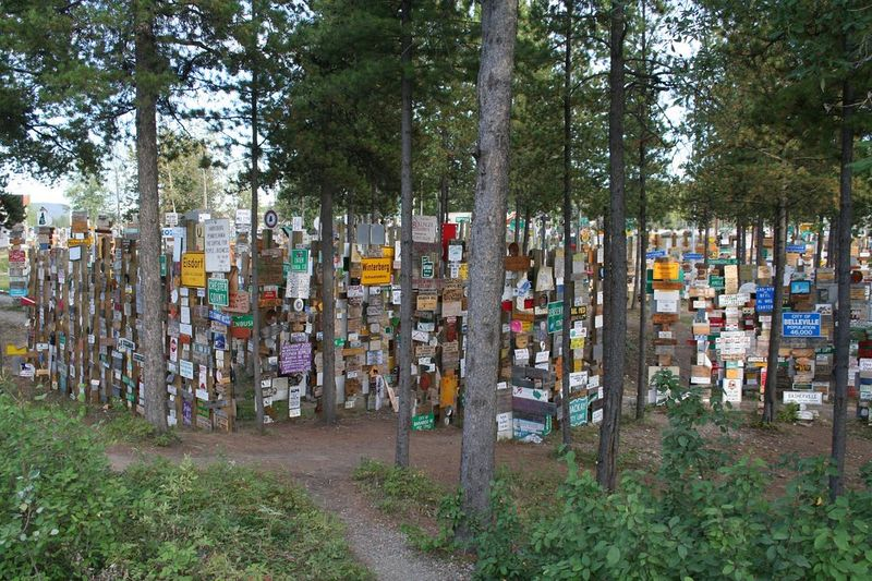 sign-post-forest-4