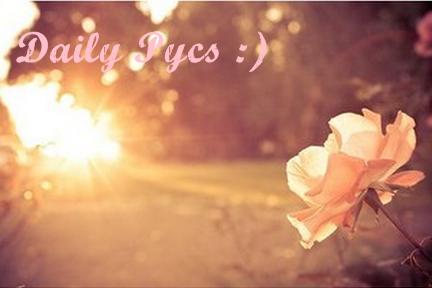 Daily Pycs ;)