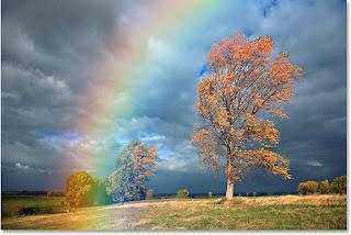 http://2.bp.blogspot.com/-KOFcoivFc3o/Tp7NAsKFvGI/AAAAAAAAAAY/4sFbTqEz2Gc/s1600/rainbow-blur.jpg