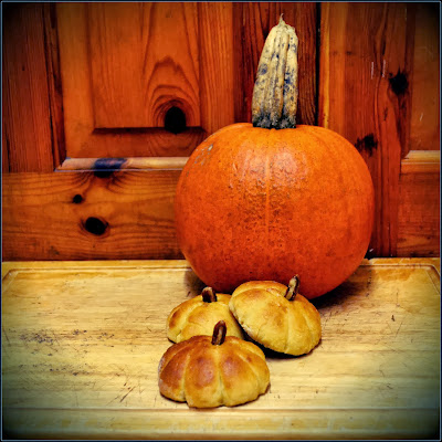 pumpkin rolls
