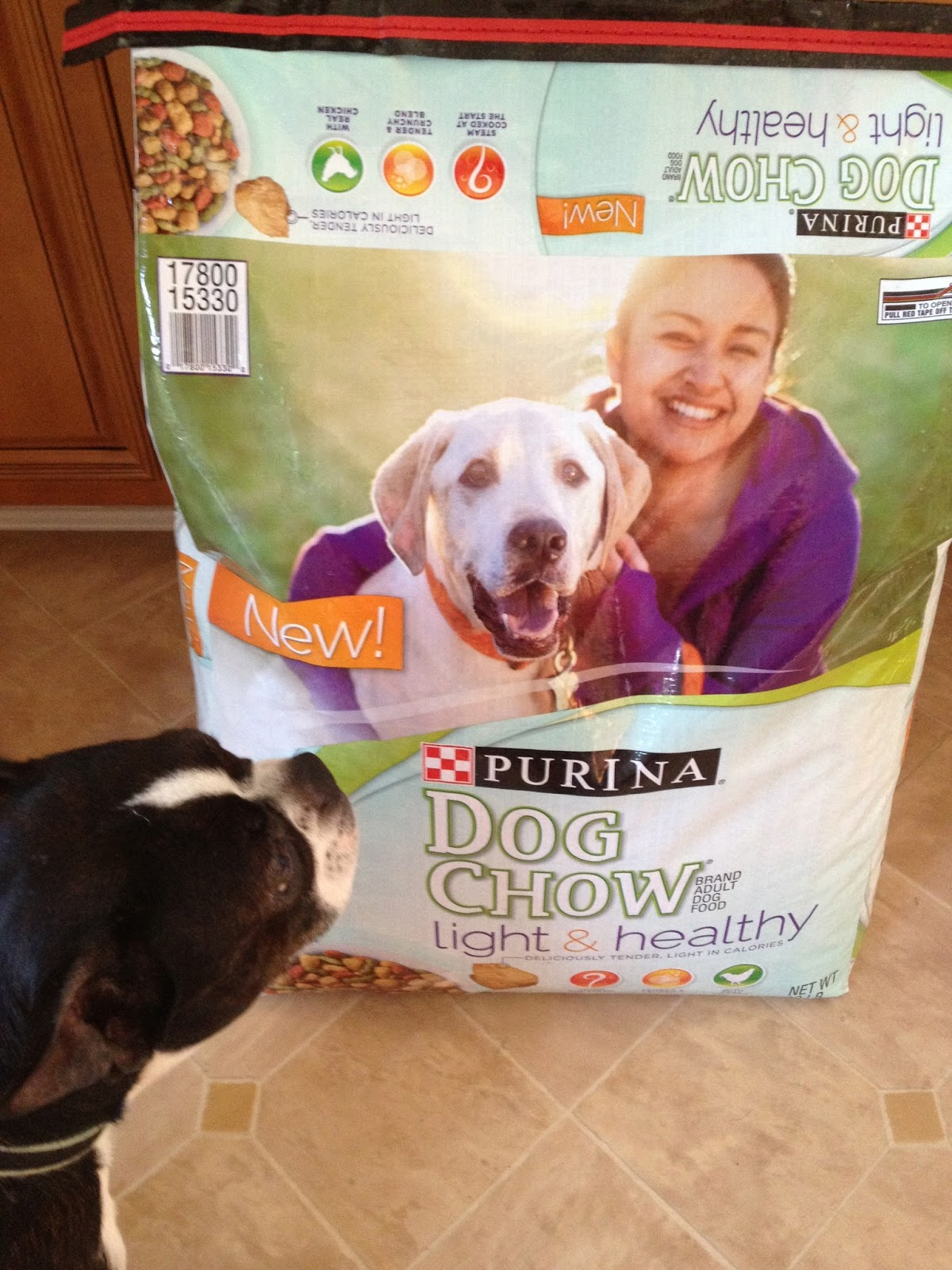 Is Purina Light And Healthy A Good Dog Food