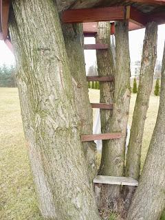 jak zrobić domek na drzewie
