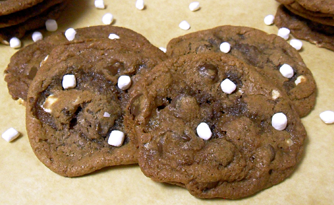 Cooking to Perfection: Hot Chocolate Cookies