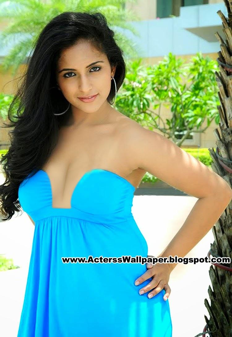2014 Telugu Hot Actress Aasheeka Bikini Photos Pics