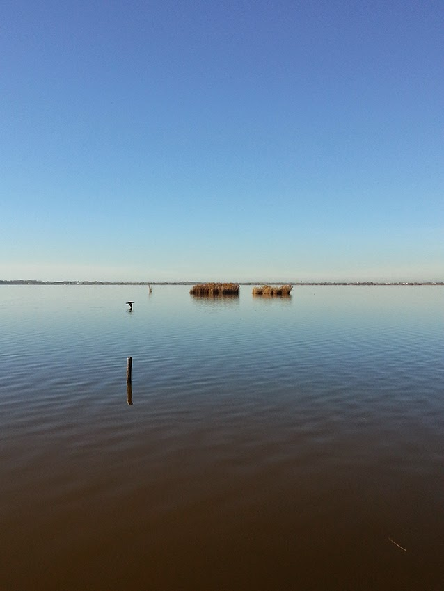 lago di massaciuccoli toscana