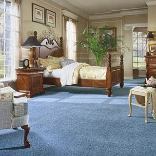 beautiful bedroom with blue carpet pictutes