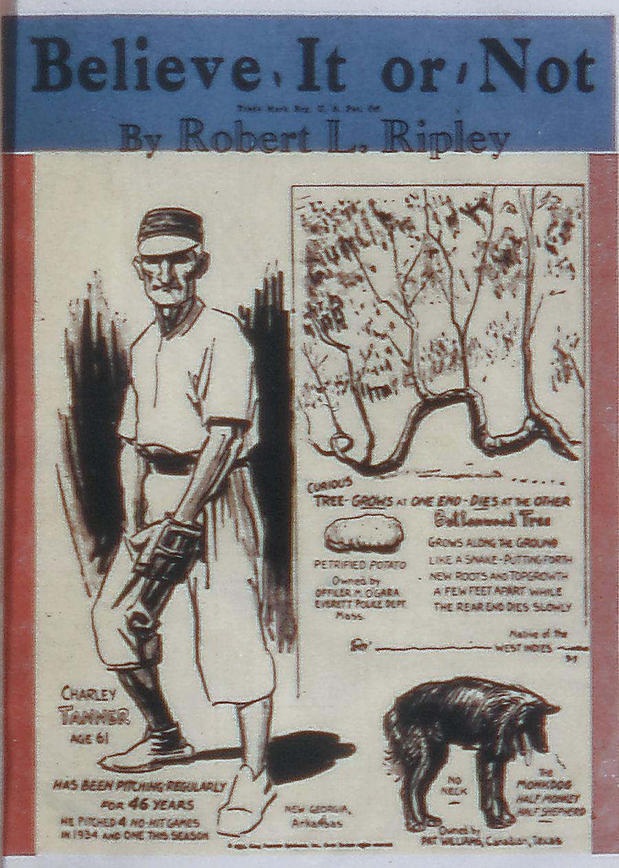 Read online All-American Comics (1939) comic -  Issue #21 - 17