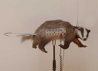 Most Unusual Musical Instruments In The World badgermin