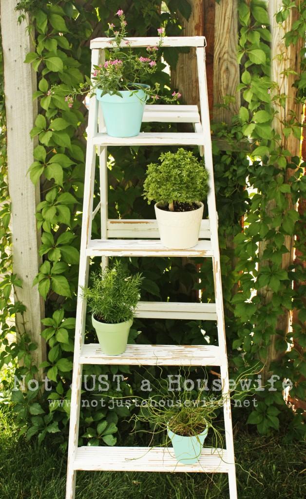 Ladder+plant+stand.jpg