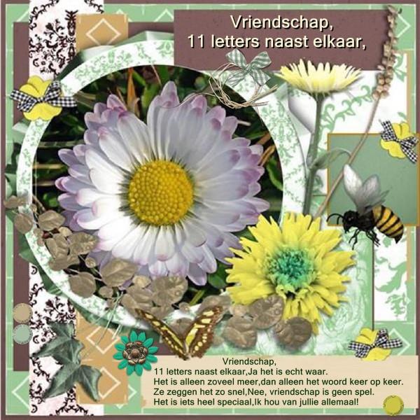 lo 3 - Jan.2016 - Vriendschap - 11 letters....