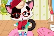 Hippi Kedi