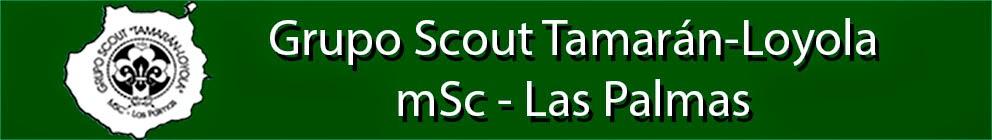Grupo Scout Tamarán-Loyola