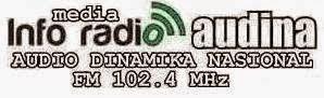 INFO MEDIA - RADIO AUDINA