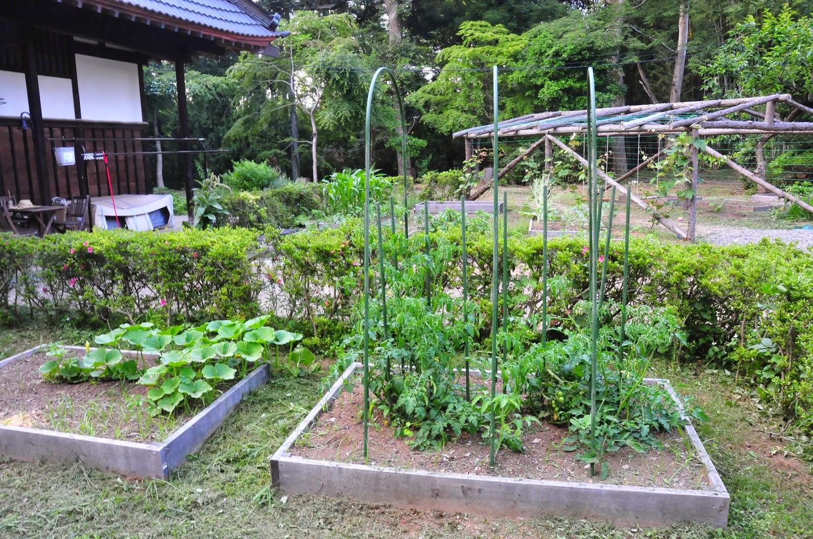 our japanese eco kominka our garden through the seasons