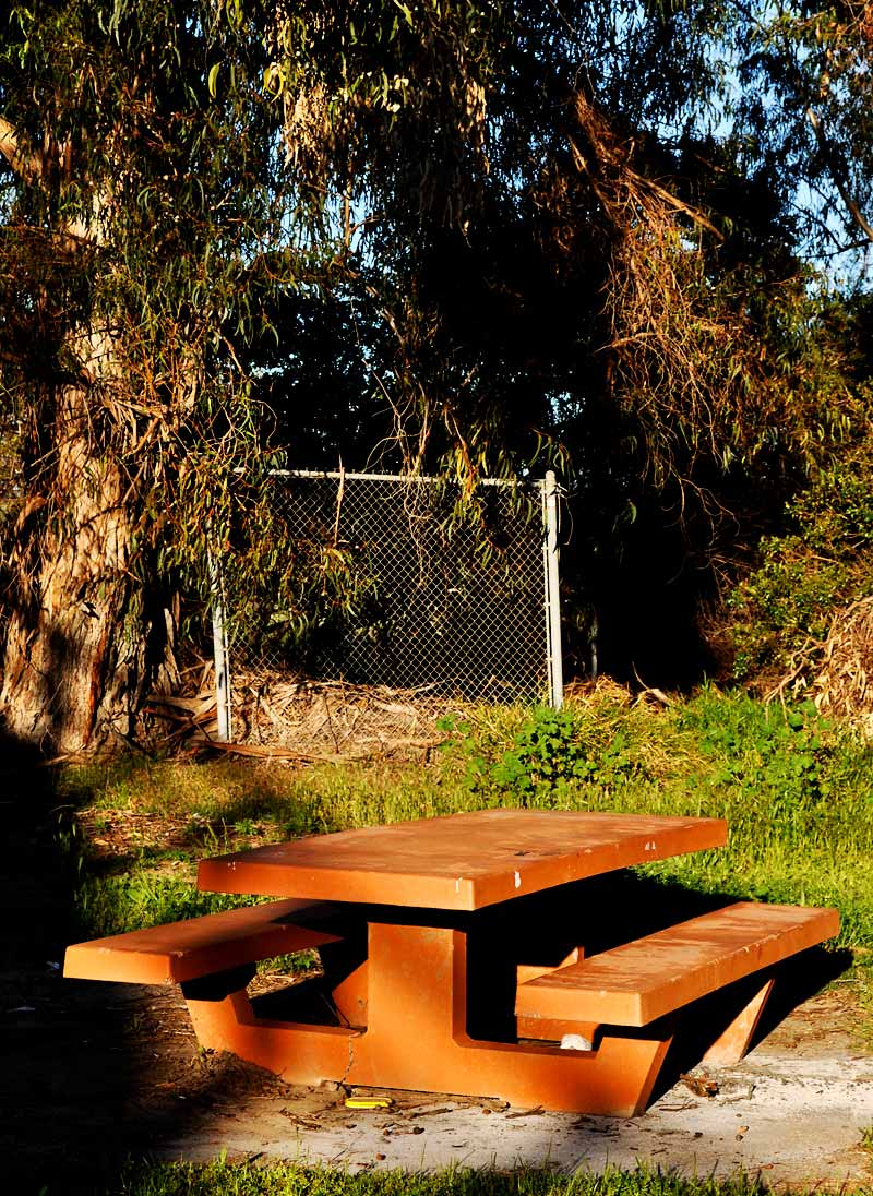 Picnic area; click for previous post