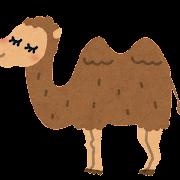 ラクダのイラスト